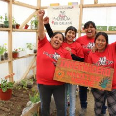 Huerta educativa, comunitaria… ¡y autogestiva!